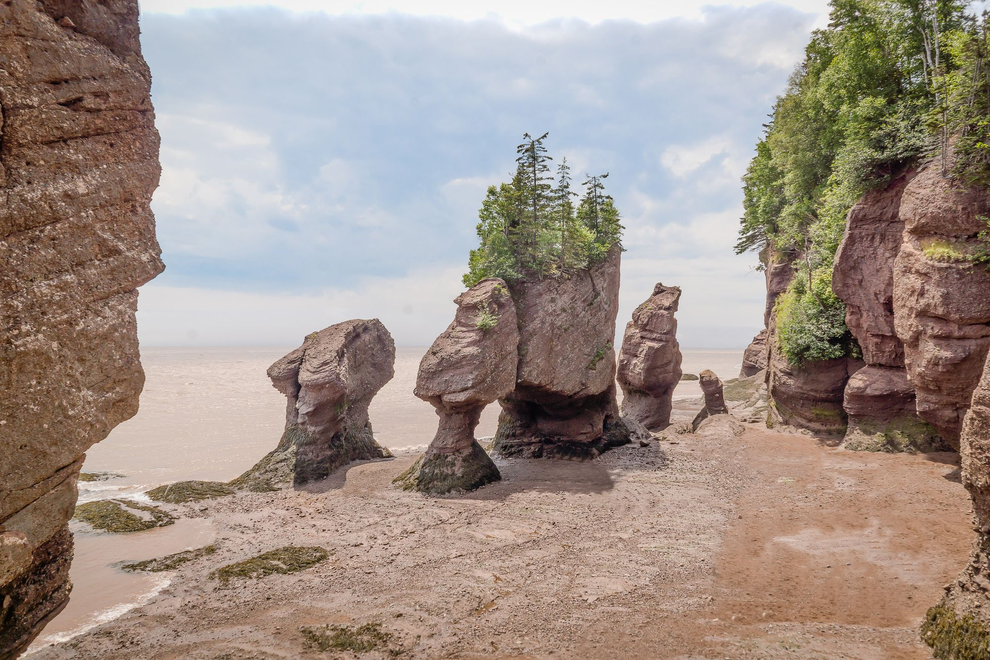 Fundy National Park in New Brunswick