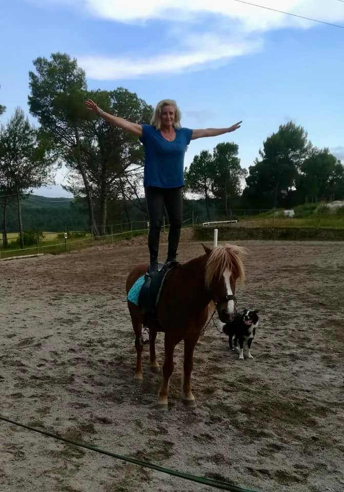 Horse and dog — travel with pets when you home exchange
