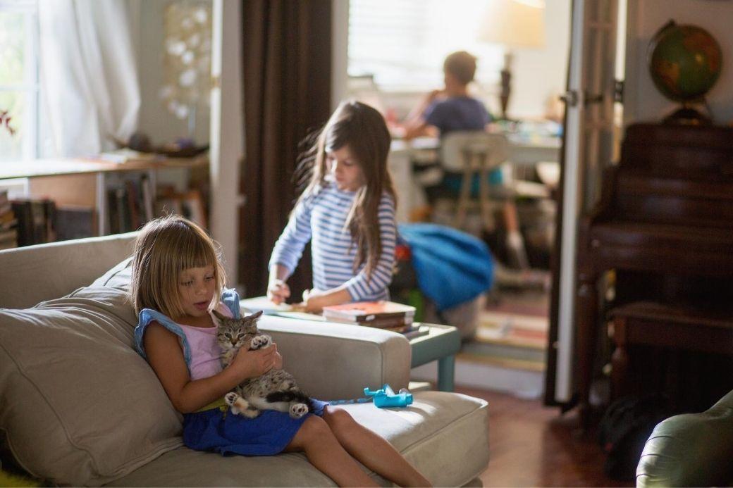 Alt HomeExchange_living-room_kids_cat, title HomeExchange_living-room_kids_cat