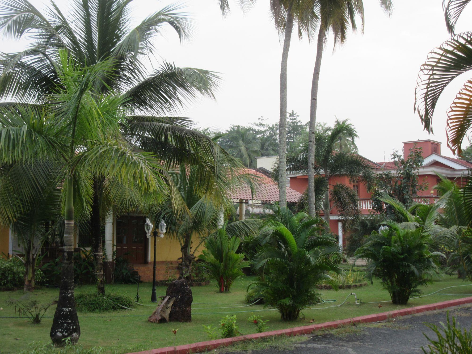 William's home exchange in Goa, India