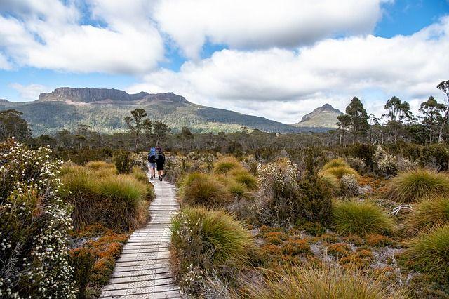 Tasmania-lugares-fuera-de-lo-comun-3906035_640