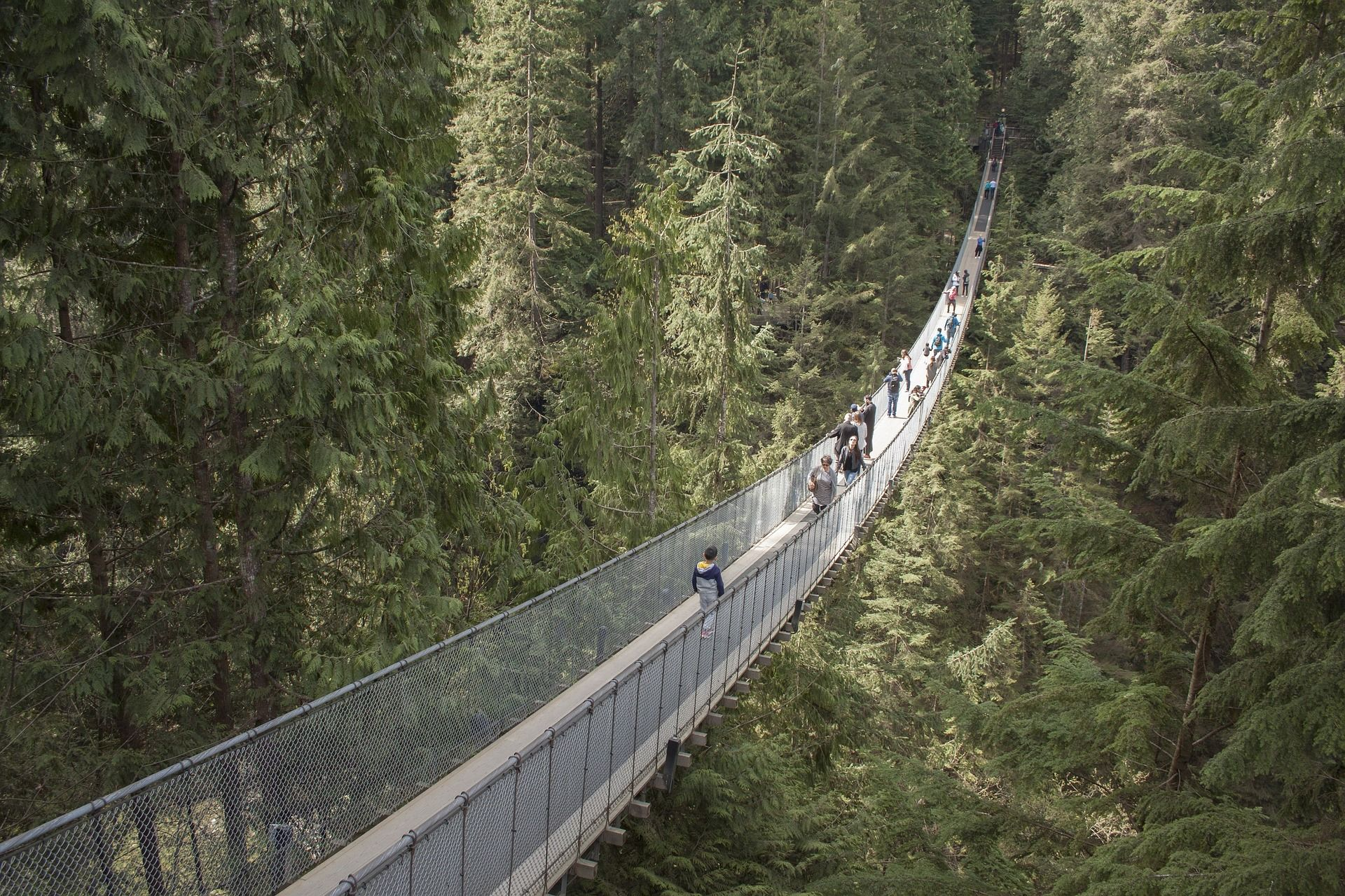 capilano-suspension-bridge-1393076_1920